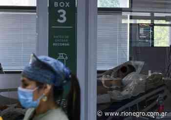 Argentina registró 10.356 casos nuevos de coronavirus y 135 muertos - Diario Río Negro