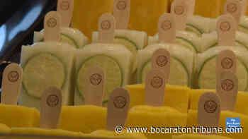 Ice cream re-imagined with Morelia Gourmet Paletas - Boca Raton's Most Reliable News Source - The Boca Raton Tribune