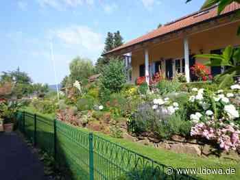 Paradiese im Kreis Cham: Elf Gärten als Naturgarten ausgezeichnet - Cham - idowa