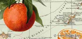 La mandarina salvaje que podría salvar a los cítricos - La Rioja