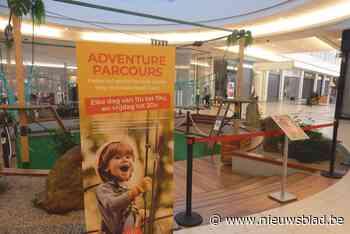 Amusement in het avonturenpark