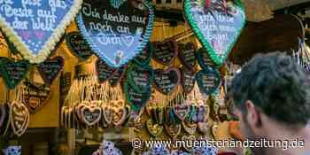 Riesenrad kommt zum Pop-Up-Freizeitpark in Vreden - Münsterland Zeitung