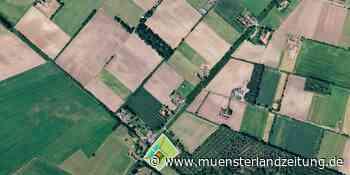 Niederländische Immobilienentwicklungsfirma für das Grenz-Work-Center   Vreden - Münsterland Zeitung