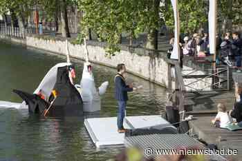 Bootjeszwanen in de echt verbonden (Brugge) - Het Nieuwsblad