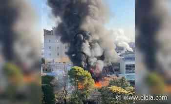 VIDEO.- Impresionante incendio en la planta de la cervecería Quilmes - Diario El Dia