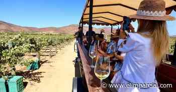 Crece interés de inversionistas en el Valle de Guadalupe - ELIMPARCIAL.COM