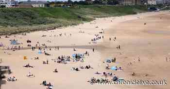 Met Office issues August heatwave update with 'very warm' temperatures on way