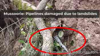 Mussoorie: Pipelines damaged due to landslides at Jincy village, water supply affected