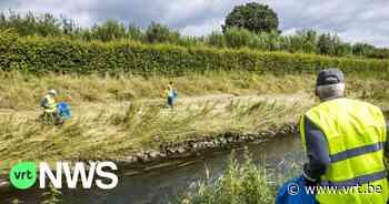 Großreinemachen an den Maasufern nach den Überschwemmungen in Limburg - VRT