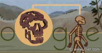 Google Doodle digs into the Turkana Human     - CNET