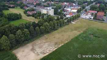 SPD-Ratsherr Bendick sieht Hochwasserschutz in Lingen gefährdet - NOZ