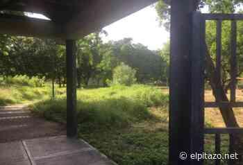 Fotos   Carúpano se queda sin parque natural y recreacional - El Pitazo
