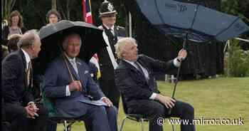 'Prince Charles unlikely to find it funny next time Boris struggles with brolly'