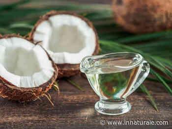 El aceite de coco daña el medio ambiente más que el aceite de palma - inNaturale.com España