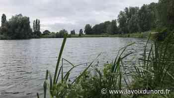 Nieppe : le projet d'aménagement des étangs commence à prendre forme - La Voix du Nord
