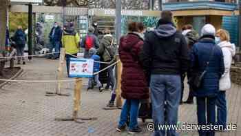 """Duisburg: Zoo verkündet traurige Nachricht – """"nicht nachvollziehbar"""" - Der Westen"""
