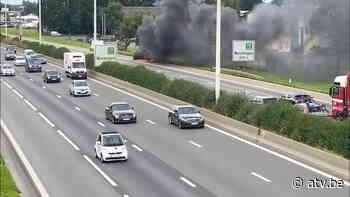 Auto brandt volledig uit op E313 in Wommelgem - ATV