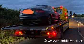Vehicles seized after uninsured drivers stopped by police