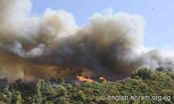 New forest fire prompts evacuations in Greece - International - World - Ahram Online