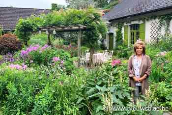 Dina Deferme zoekt na 30 jaar een koper met liefde voor haar legendarische tuin