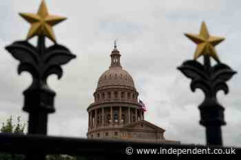 Texas audit proposed by GOP would miss minor but real errors