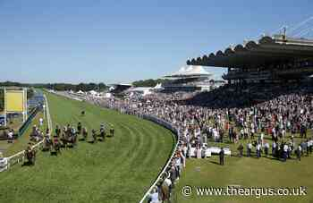 Two men left with head injuries after 'attack' at Goodwood racecourse