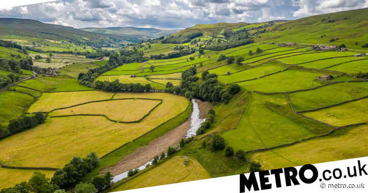 Rural homes to benefit from £5 billion broadband investment