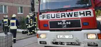 Polizei sucht Zeugen für Bodenlauffeuer in Rathenower Heerstraße in Genthin - Volksstimme
