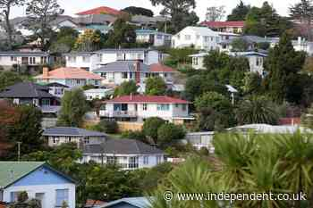 New Zealand housing crisis leads to human rights inquiry