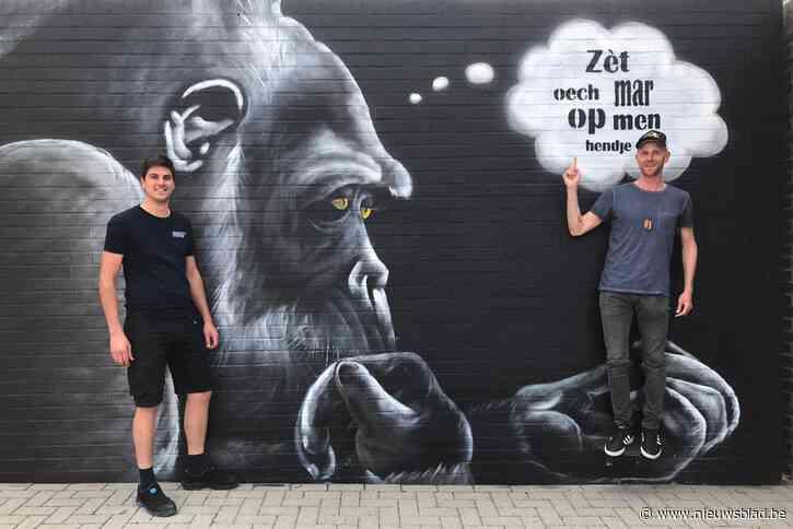 Kunstenaar Jo Beerden is apetrots op zijn selfiewall