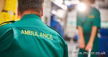 Paramedic who mocked patients on Facebook with 'deplorable' posts suspended