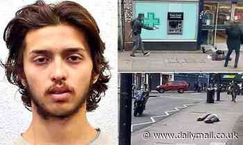 Streatham terrorist under 24-hour surveillance by armed police when he stabbed two, inquest hears