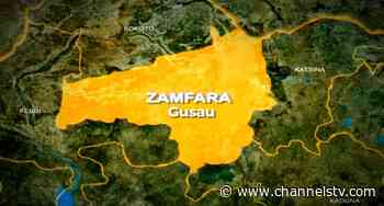 Zamfara Doctors Give Govt Two-Week Ultimatum To Tackle Insecurity - CHANNELS TELEVISION