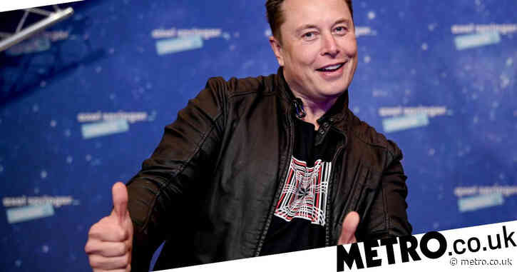 Elon Musk: 'I don't want to be CEO of anything'