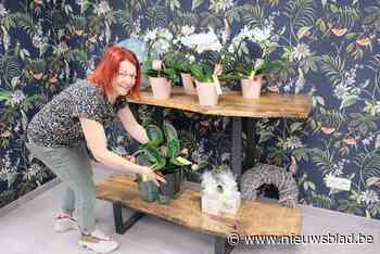 """Al jaren telt deze gemeente geen enkele bloemenwinkel meer, maar daar brengt Ilse nu verandering in: """"Mensen gunnen zich in deze tijden graag een bloempje"""""""