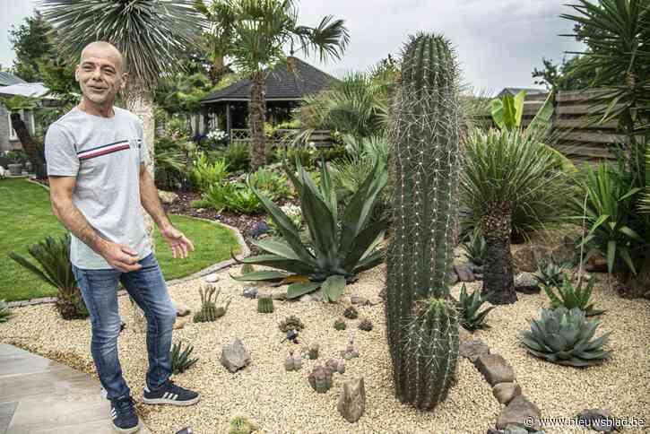 """Ronny heeft tropische tuin tussen de dennenbomen: """"Ik blijf een Kempenaar in mijn eigen Thailand"""""""