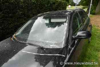 Ontplofte gasfles beschadigt autoruit in Weelde-Statie: geen gewonden