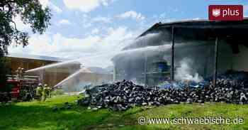 Nach Brand in Laufenen, Meckenbeuren: Das sagt der Landwirt - Schwäbische