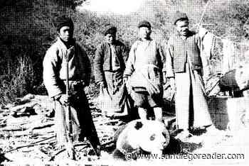 Mira Mesa man captured first giant panda in 1936