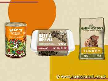 How to choose the right dog food for your four-legged friend, according to vets - The Independent