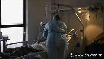 OMS señala que los casos de coronavirus en la región europea superan los 60 millones - Anadolu Agency