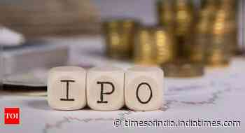 Adani Wilmar plans to raise up to Rs 4,500 crore through IPO