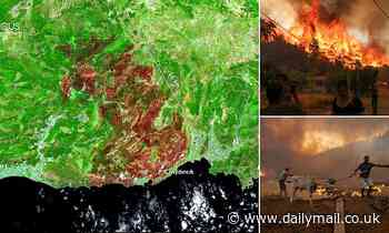 Shocking satellite images reveal ten-mile-long scorch mark caused by wildfires in Turkey