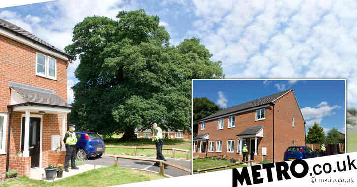 'Screams heard and girl hid behind tree' before woman in 30s found dead
