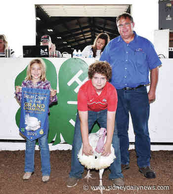 Champion animals auctioned off Friday - sidneydailynews.com