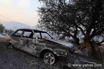'The Animals Are on Fire' in Devastating Wildfires That Have Killed at Least 8 People in Turkey - Yahoo Entertainment