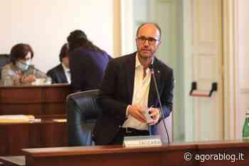Consiglio comunale di Fasano, le tariffe Tari restano invariate - Agorà Blog - AgoraBlog