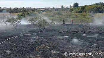 Corpo de Bombeiros controla incêndio na Água da Porca em Assis - Assiscity