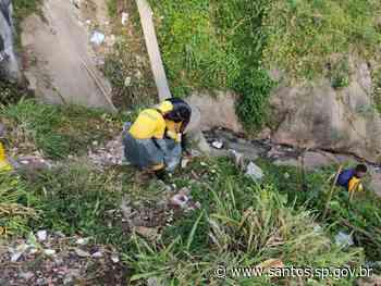 Lixo é retirado de encosta do Morro Santa Maria, em Santos - Prefeitura de Santos