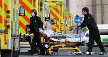 Covid deaths rise by 50% in a single week to highest levels since April